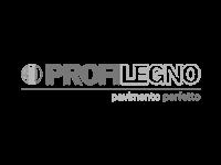 partner-unocmodena_0003_profilegno